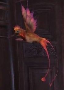 elegant-coralbird-monster-hunter-world-endemic-life