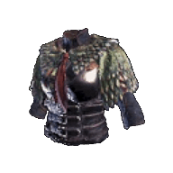 forest_armor_female.png