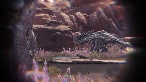 guide-binoculars-barroth2-small