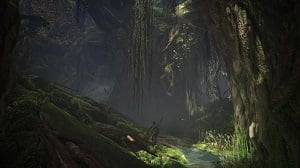 monster-hunter-world-ancient-forest-location-information