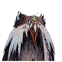 ruinous-coil-alpha-plus-mhw-wiki-guide